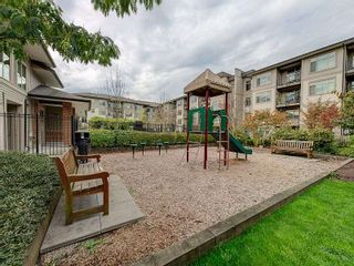"""Photo 14: 102 9199 TOMICKI Avenue in Richmond: West Cambie Condo for sale in """"MERIDIAN GATE"""" : MLS®# R2006928"""