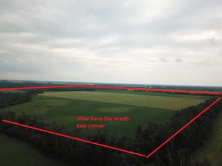 Photo 6: 27313 Twp Road 505: Rural Parkland County Rural Land/Vacant Lot for sale : MLS®# E4255712