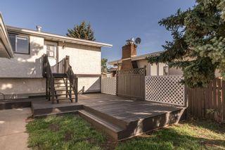 Photo 21: 15916 100 Street in Edmonton: Zone 27 House for sale : MLS®# E4264242