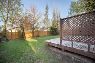 Photo 37: 135 Mayfield Crescent in Winnipeg: Charleswood Residential for sale (1G)  : MLS®# 202011350