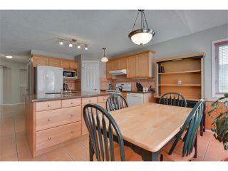 Photo 12: 83 MT SELKIRK Close SE in Calgary: McKenzie Lake House for sale : MLS®# C4066159