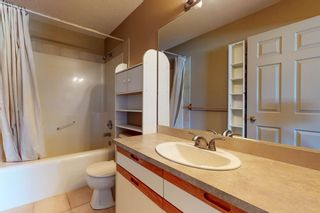 Photo 32: 18 Coral Sands Place NE in Calgary: Coral Springs Detached for sale : MLS®# A1109060