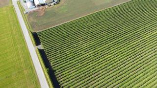 Photo 15: 7121 BEHARRELL Road in Abbotsford: Matsqui Land for sale : MLS®# R2620820