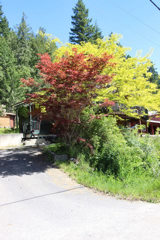 Photo 3: 7633 Squilax Anglemont Road: Anglemont House for sale (North Shuswap)  : MLS®# 10233439