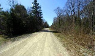 Photo 14: Lt 8 Maritime Road in Kawartha Lakes: Rural Bexley Property for sale : MLS®# X4728533