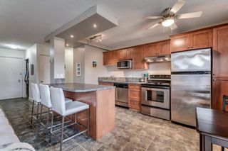 Photo 7: 102 1027 Cameron Avenue SW in Calgary: Lower Mount Royal Apartment for sale : MLS®# A1058522