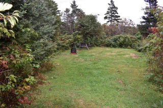 Photo 16: 50 Whale Cove Road in Whale Cove: 401-Digby County Commercial  (Annapolis Valley)  : MLS®# 202020501