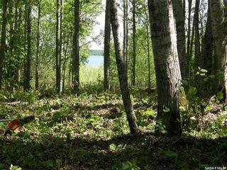 Photo 3: Lot 10 Delaronde Way in Delaronde Lake: Lot/Land for sale : MLS®# SK851495
