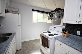 Photo 5: 142 Danbury Bay in Winnipeg: Crestview Residential for sale (5H)  : MLS®# 202112843