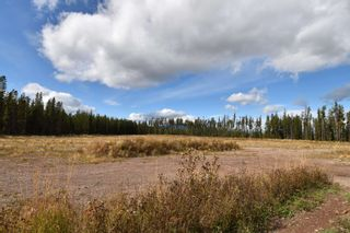 Photo 5: 10955 SKILLHORN Road: Telkwa Land Commercial for sale (Smithers And Area (Zone 54))  : MLS®# C8040361