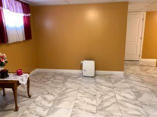 Photo 20: 5220 48 Avenue: Lougheed House for sale : MLS®# E4243675