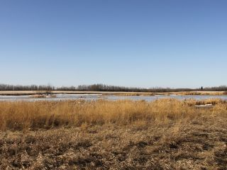 Photo 6: RGE RD 175 TWP RD 500: Rural Beaver County Rural Land/Vacant Lot for sale : MLS®# E4233179