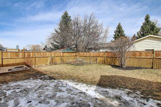 Photo 39: 315 Banister Drive: Okotoks Detached for sale : MLS®# A1089358