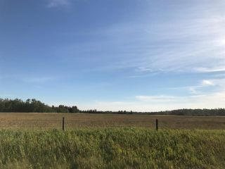 Photo 14: 57525 Rg Rd 214: Rural Sturgeon County Rural Land/Vacant Lot for sale : MLS®# E4237624