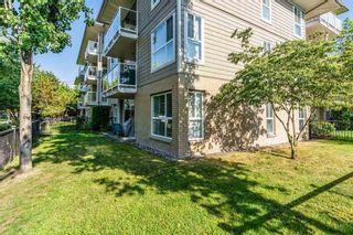 """Photo 13: 109 22255 122 Avenue in Maple Ridge: West Central Condo for sale in """"MAGNOLIA GATE"""" : MLS®# R2272344"""