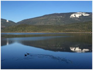 Photo 115: 868 Bradley Road in Seymour Arm: SUNNY WATERS Industrial for sale : MLS®# 10190989