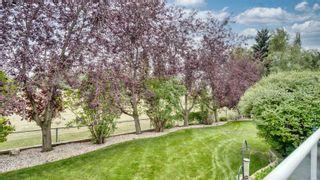 Photo 36: 11007 10 Avenue in Edmonton: Zone 16 House for sale : MLS®# E4261236