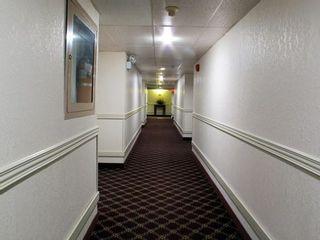 Photo 17: 4904 45 Street: Rocky Mountain House Hotel/Motel for sale : MLS®# C4279469