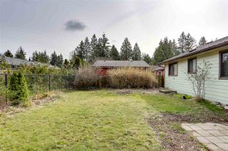 Photo 25: 4548 206B Street in Langley: Langley City House for sale : MLS®# R2552558