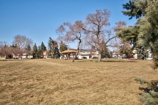 Photo 2: 14 Radcliffe Crescent SE in Calgary: Albert Park/Radisson Heights Detached for sale : MLS®# A1085056
