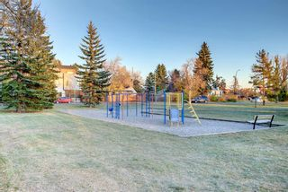 Photo 48: 456 18 Avenue NE in Calgary: Winston Heights/Mountview Detached for sale : MLS®# A1153811