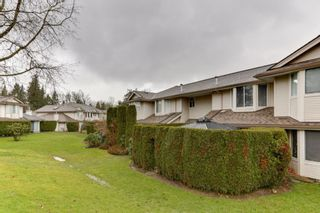 """Photo 24: 26 9045 WALNUT GROVE Drive in Langley: Walnut Grove Townhouse for sale in """"BRIDLEWOODS"""" : MLS®# R2535802"""