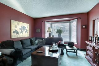 Photo 15: 4635 22 Avenue NW in Calgary: Montgomery Detached for sale : MLS®# A1068719