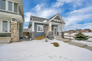 Photo 37: 2 Ravenswynd Rise SE: Airdrie Detached for sale : MLS®# A1073616