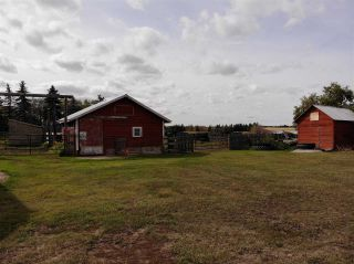 Photo 8: 43462 Range Road 150: Killam Land Commercial for sale : MLS®# E4210670