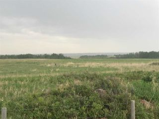 Photo 14: TWP 580 Rg Rd 240 Sturgeon County: Rural Sturgeon County Rural Land/Vacant Lot for sale : MLS®# E4248027