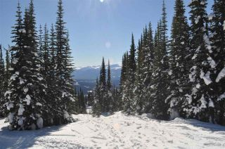 """Photo 18: 217 PRAIRIE Road in Smithers: Smithers - Rural Land for sale in """"Hudson Bay Mountain Resort"""" (Smithers And Area (Zone 54))  : MLS®# R2545464"""