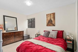 Photo 10: 205 611 Constance Ave in : Es Saxe Point Condo for sale (Esquimalt)  : MLS®# 859111