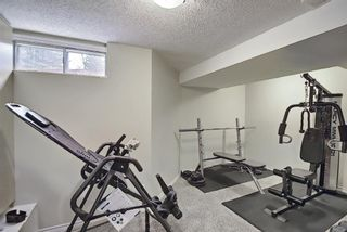 Photo 42: 117 Hawkford Court NW in Calgary: Hawkwood Detached for sale : MLS®# A1103676