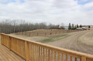 Photo 46: 19515 Township Road 354 in Rural Stettler No. 6, County of: Rural Stettler County Detached for sale : MLS®# A1102393