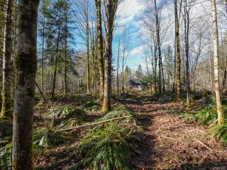 Photo 53: 3699 Burns Rd in COURTENAY: CV Courtenay West House for sale (Comox Valley)  : MLS®# 834832