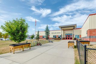 Photo 38: 17 Royal Birch Landing NW in Calgary: Royal Oak Residential for sale : MLS®# A1060735