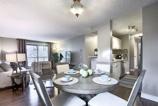 Photo 28: 303 130 25 Avenue SW in Calgary: Mission Apartment for sale : MLS®# A1023034