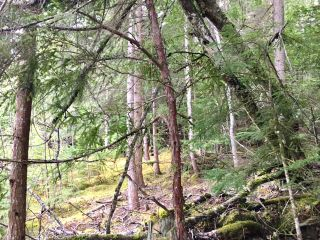 Photo 28: 3,4,6 Armstrong Road in Eagle Bay: Vacant Land for sale : MLS®# 10133907