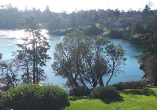 Photo 2: 407 105 E Gorge Rd in : Vi Burnside Condo for sale (Victoria)  : MLS®# 867569