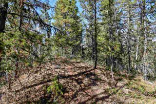 Photo 10: 3205 MILLAR Road in Smithers: Smithers - Rural House for sale (Smithers And Area (Zone 54))  : MLS®# R2475972