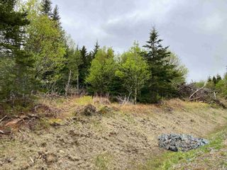Photo 4: Lot 102 Point Road in Clam Bay: 35-Halifax County East Vacant Land for sale (Halifax-Dartmouth)  : MLS®# 202116103