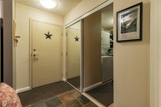 Photo 13: 205 11218 80 Street in Edmonton: Zone 09 Condo for sale : MLS®# E4230603