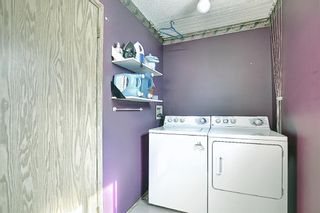 Photo 16: 23 Applecrest Court SE in Calgary: Applewood Park Detached for sale : MLS®# A1079523