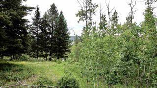 Photo 2: 437 WOODLAND Drive in Williams Lake: Williams Lake - City Land for sale (Williams Lake (Zone 27))  : MLS®# R2475217