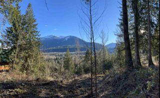 Photo 5: 4149 SLESSE Road in Chilliwack: Chilliwack River Valley Land for sale (Sardis)  : MLS®# R2529886
