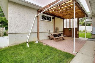 Photo 38: 29 CALANDAR Road NW in Calgary: Collingwood Detached for sale : MLS®# C4304918
