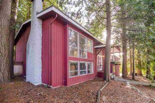 Photo 3: 11124 LYON Road in Delta: Sunshine Hills Woods House for sale (N. Delta)  : MLS®# R2514537
