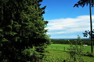 Photo 17: 6124 Township Road 314: Rural Mountain View County Detached for sale : MLS®# A1102303