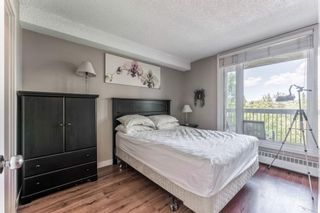 Photo 15: 460 310 8 Street SW in Calgary: Eau Claire Apartment for sale : MLS®# A1022448