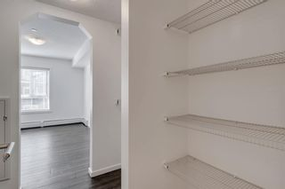 Photo 20: 4208 279 Copperpond Common SE in Calgary: Copperfield Apartment for sale : MLS®# A1095874